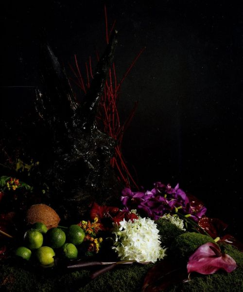 arrangementfloralstandardn22janvierfvriermars2009010.jpg